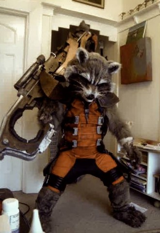 rocket-raccoon-costume-1-330x480